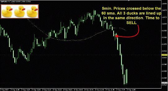 Торговая система Forex «3 утки» шаг 3 MA